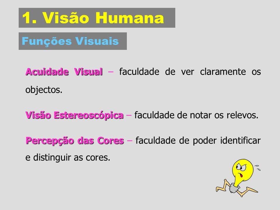 1. Visão Humana Funções Visuais. Acuidade Visual – faculdade de ver claramente os objectos. Visão Estereoscópica – faculdade de notar os relevos.