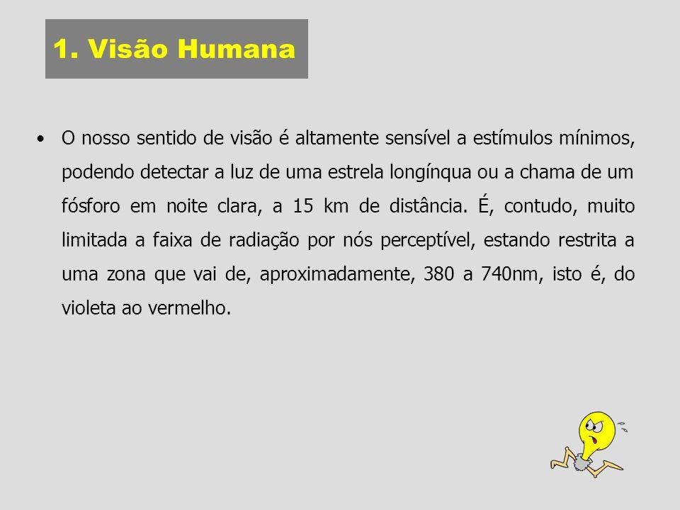 1. Visão Humana