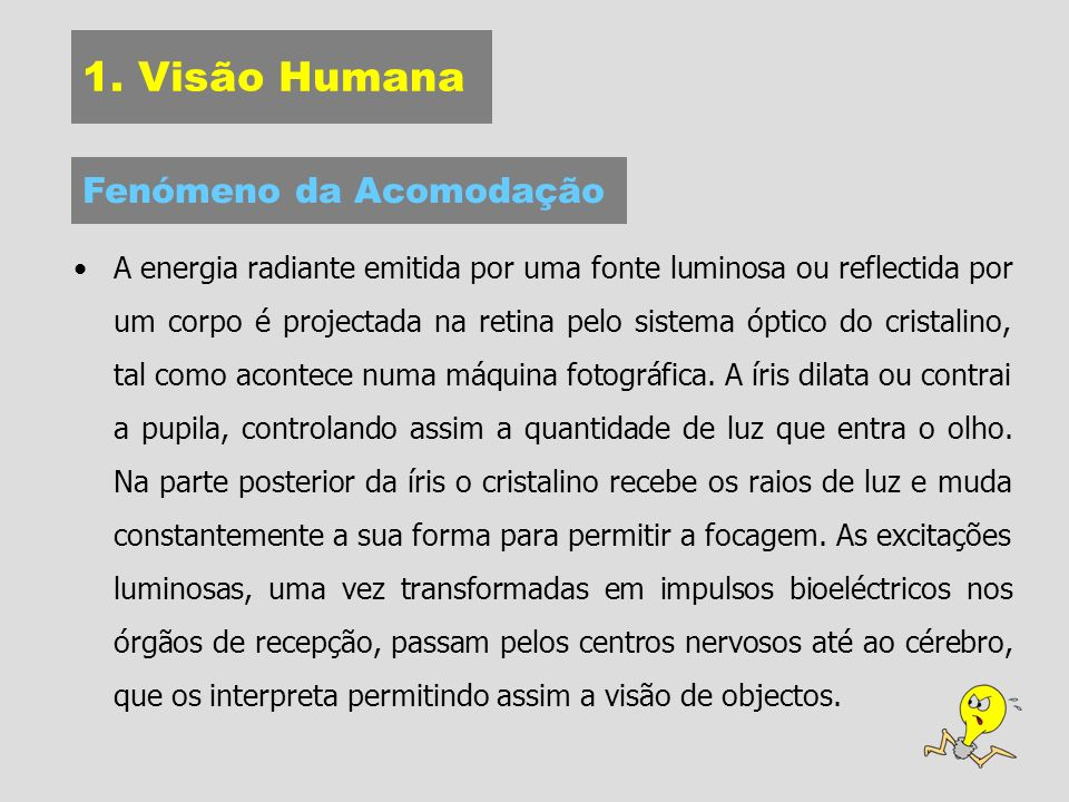 1. Visão Humana Fenómeno da Acomodação