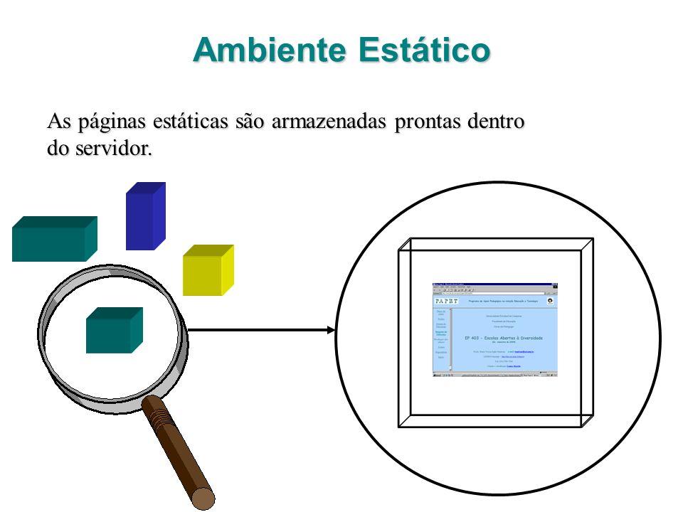 Ambiente Estático As páginas estáticas são armazenadas prontas dentro do servidor.