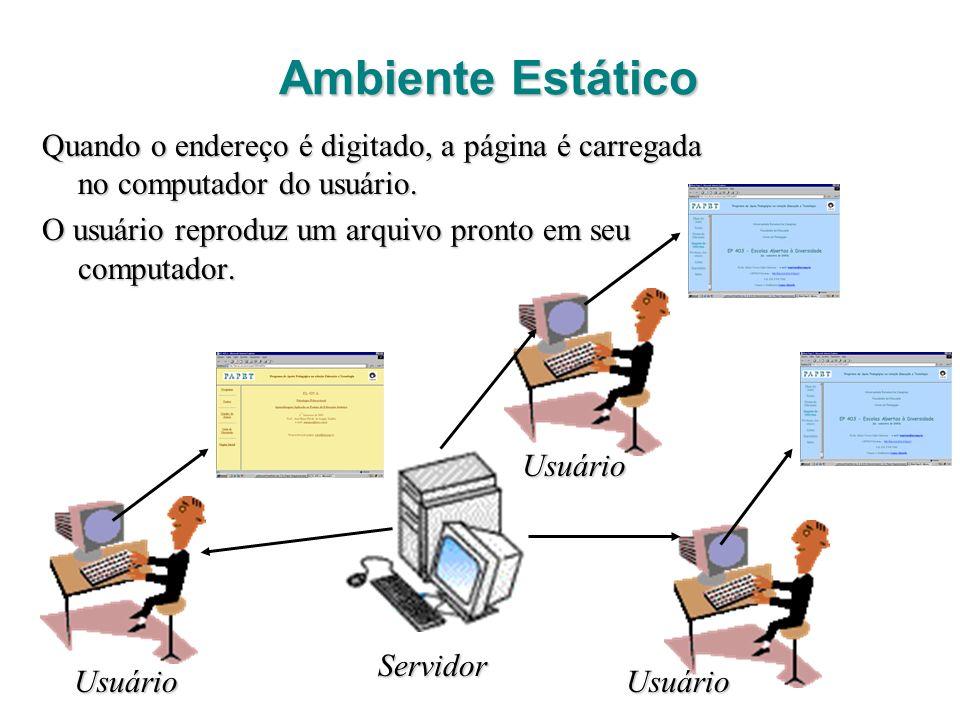 Ambiente Estático Quando o endereço é digitado, a página é carregada no computador do usuário.