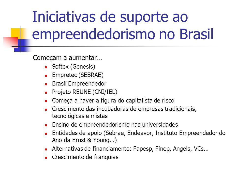 Iniciativas de suporte ao empreendedorismo no Brasil