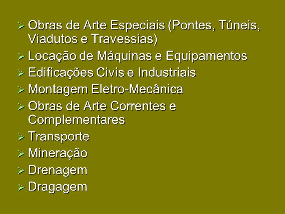 Obras de Arte Especiais (Pontes, Túneis, Viadutos e Travessias)