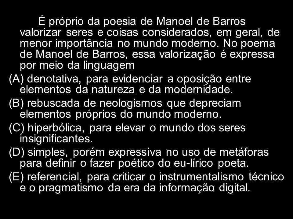 É próprio da poesia de Manoel de Barros valorizar seres e coisas considerados, em geral, de menor importância no mundo moderno. No poema de Manoel de Barros, essa valorização é expressa por meio da linguagem