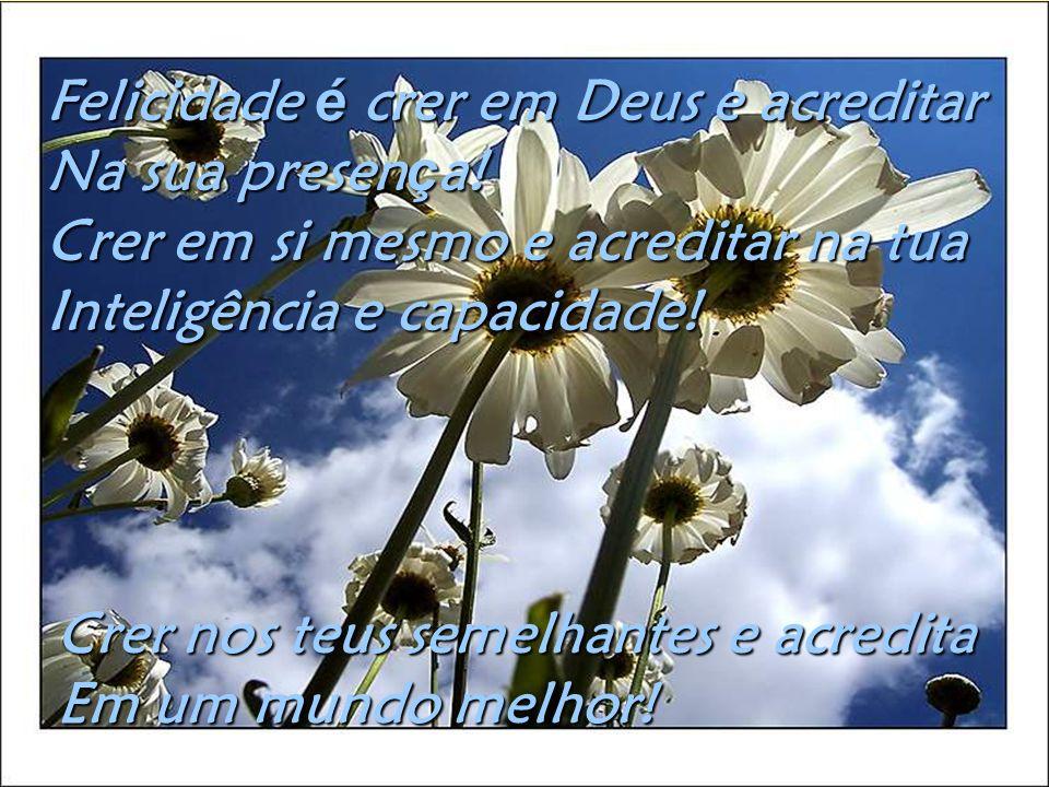 Felicidade é crer em Deus e acreditar