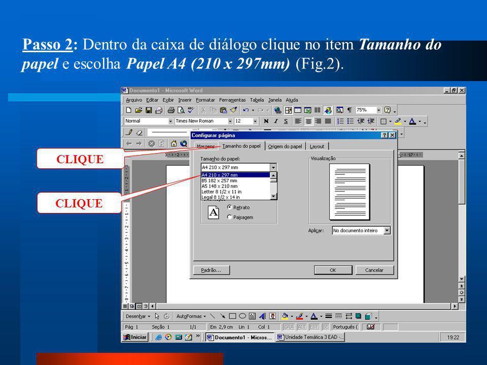 Passo 2: Dentro da caixa de diálogo clique no item Tamanho do papel e escolha Papel A4 (210 x 297mm) (Fig.2).
