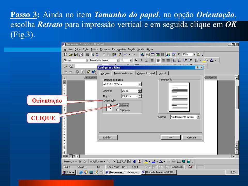 Passo 3: Ainda no item Tamanho do papel, na opção Orientação, escolha Retrato para impressão vertical e em seguida clique em OK (Fig.3).