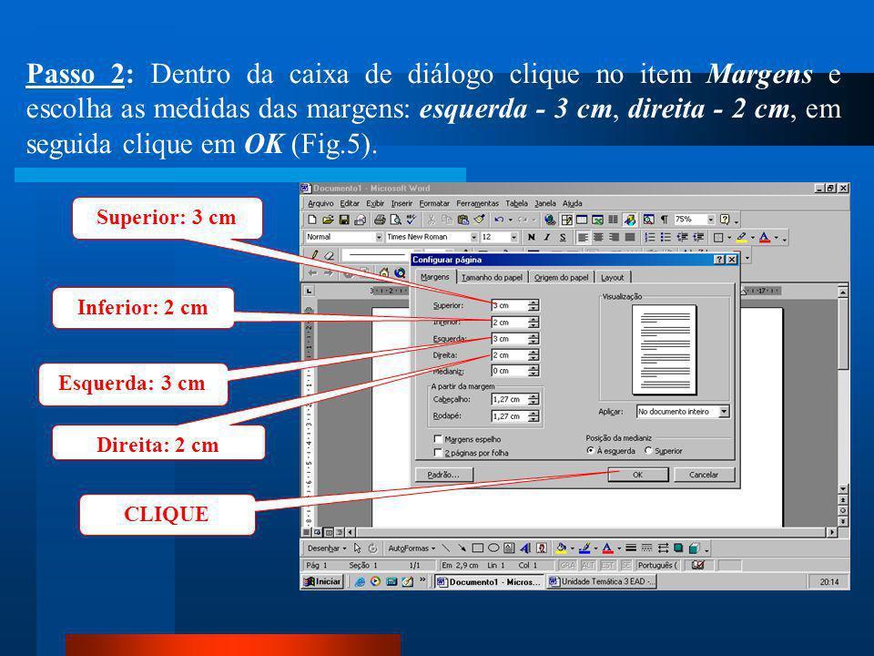 Passo 2: Dentro da caixa de diálogo clique no item Margens e escolha as medidas das margens: esquerda - 3 cm, direita - 2 cm, em seguida clique em OK (Fig.5).
