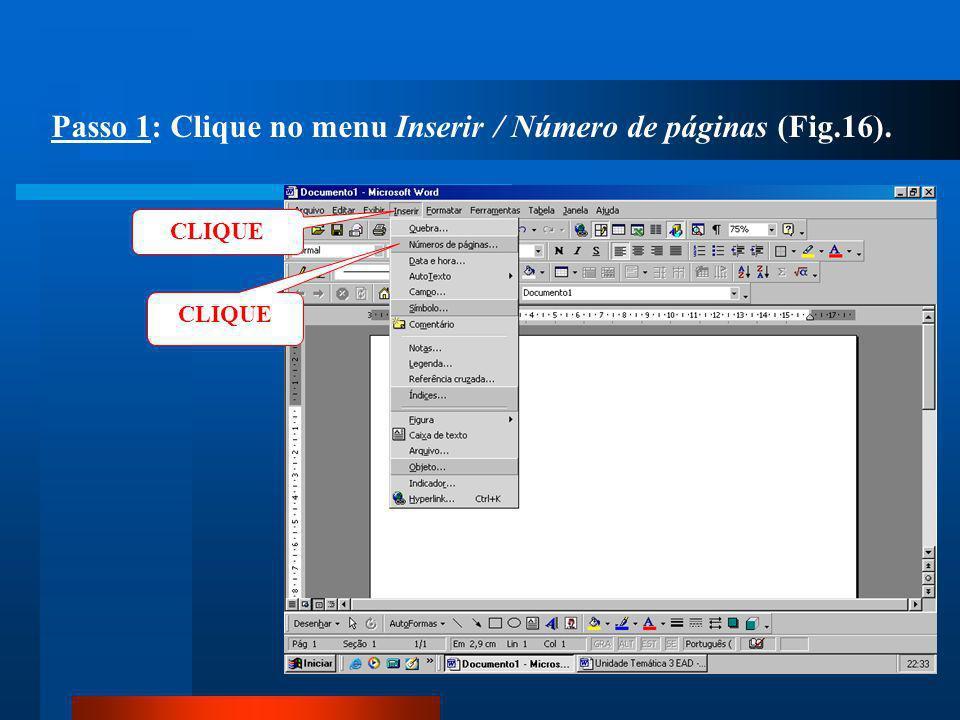Passo 1: Clique no menu Inserir / Número de páginas (Fig.16).