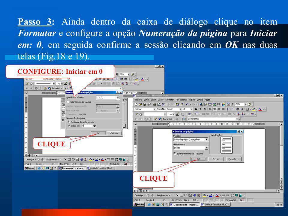 Passo 3: Ainda dentro da caixa de diálogo clique no item Formatar e configure a opção Numeração da página para Iniciar em: 0, em seguida confirme a sessão clicando em OK nas duas telas (Fig.18 e 19).
