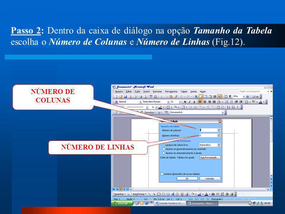Passo 2: Dentro da caixa de diálogo na opção Tamanho da Tabela escolha o Número de Colunas e Número de Linhas (Fig.12).