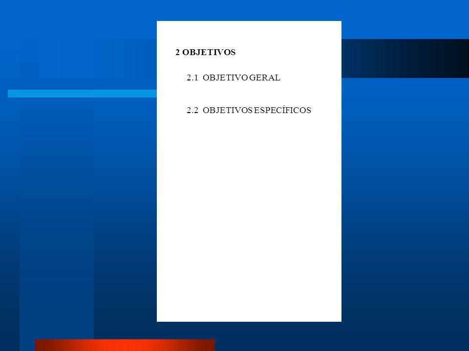 2 OBJETIVOS 2.1 OBJETIVO GERAL 2.2 OBJETIVOS ESPECÍFICOS