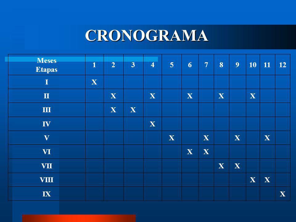 CRONOGRAMA Meses Etapas 1 2 3 4 5 6 7 8 9 10 11 12 I X II III IV V VI
