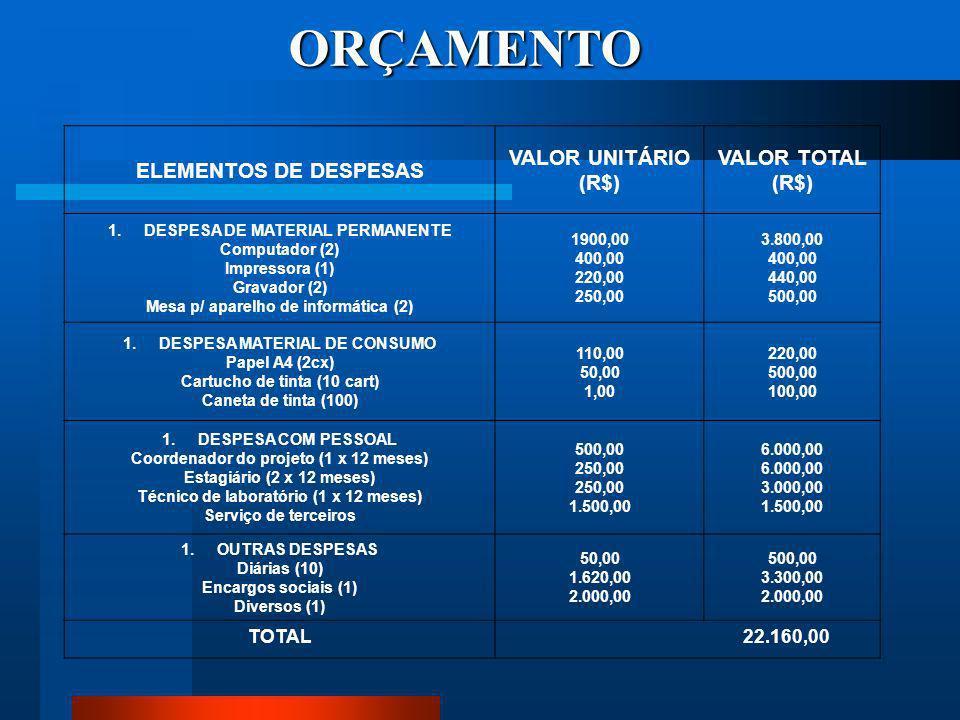 ORÇAMENTO ELEMENTOS DE DESPESAS VALOR UNITÁRIO (R$) VALOR TOTAL TOTAL