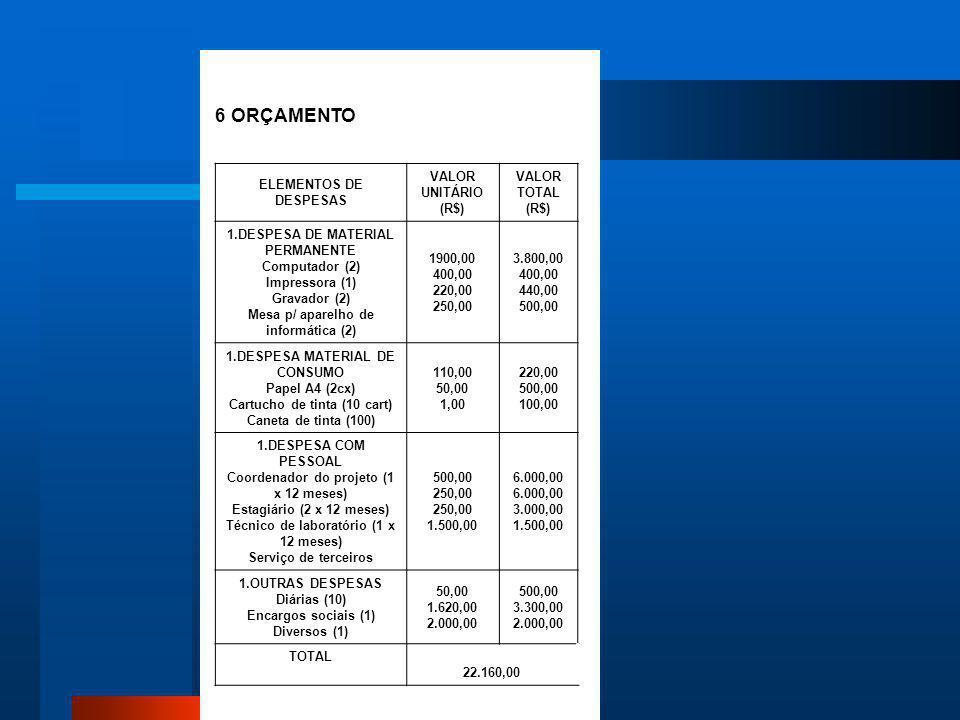 6 ORÇAMENTO ELEMENTOS DE DESPESAS VALOR UNITÁRIO (R$) VALOR TOTAL