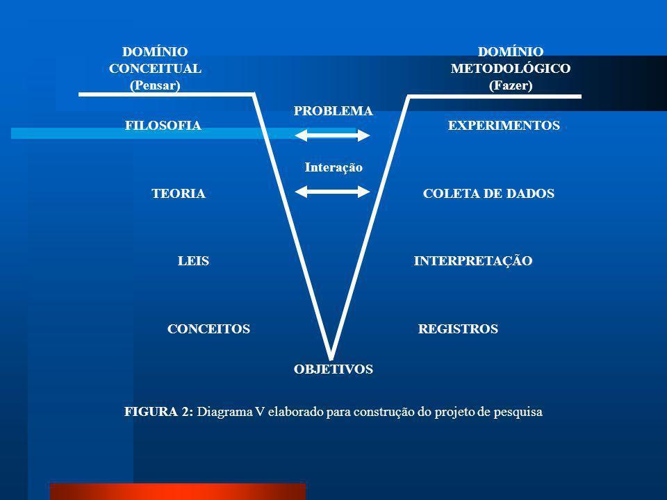 FIGURA 2: Diagrama V elaborado para construção do projeto de pesquisa