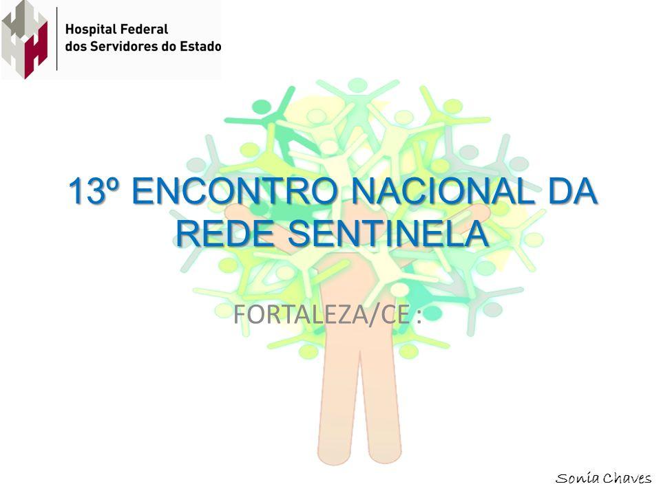 13º ENCONTRO NACIONAL DA REDE SENTINELA