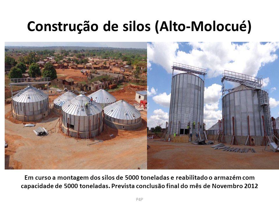Construção de silos (Alto-Molocué)