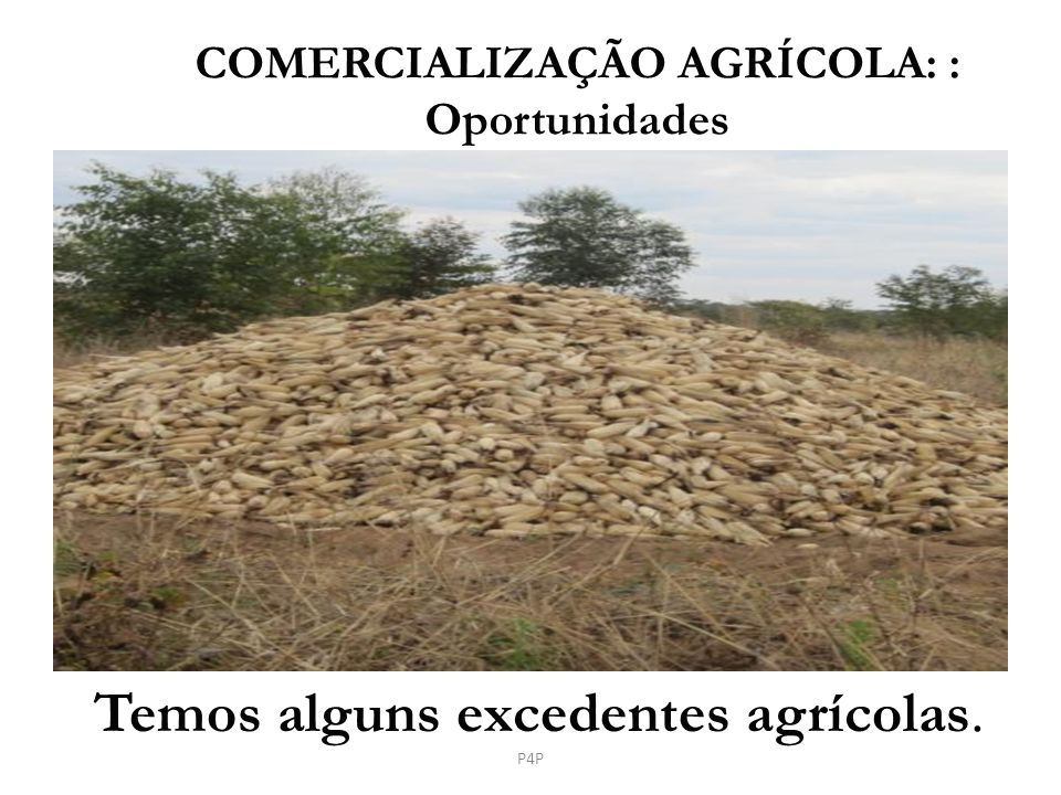 Temos alguns excedentes agrícolas.