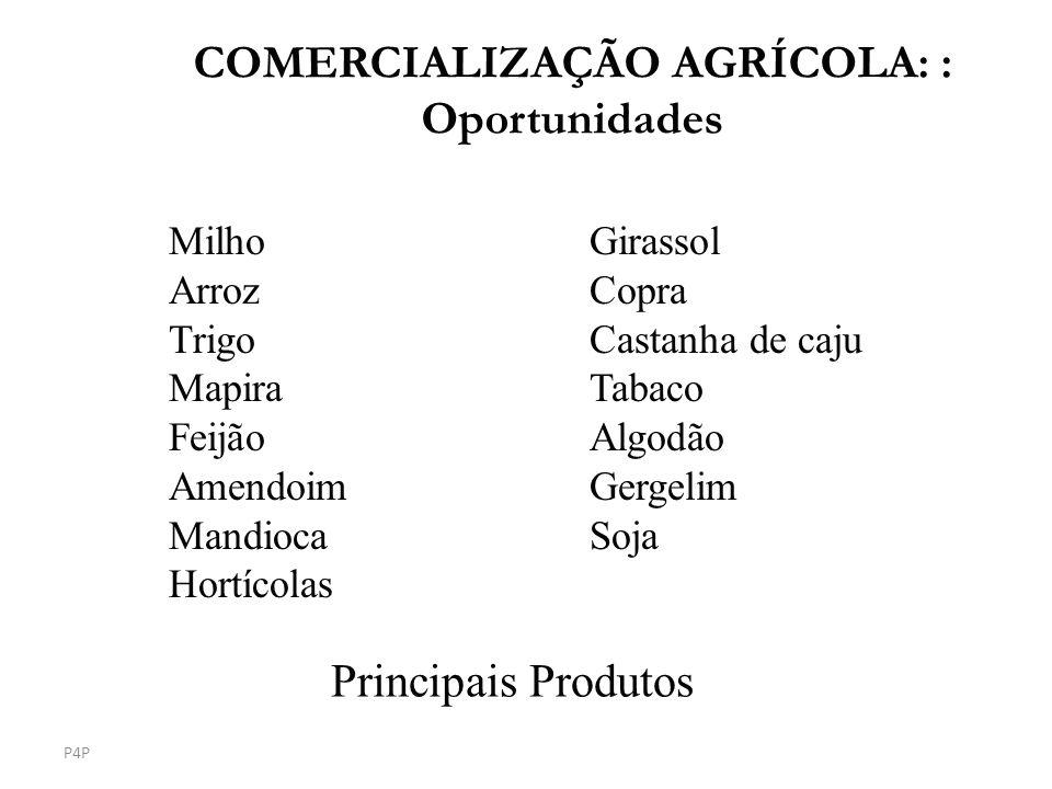 COMERCIALIZAÇÃO AGRÍCOLA: : Oportunidades
