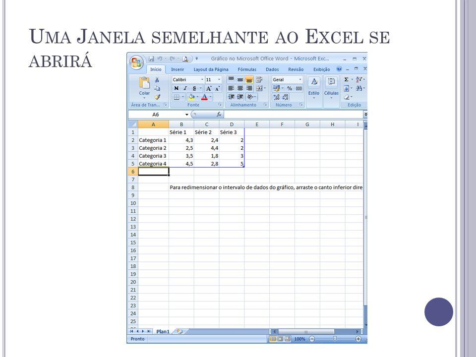Uma Janela semelhante ao Excel se abrirá