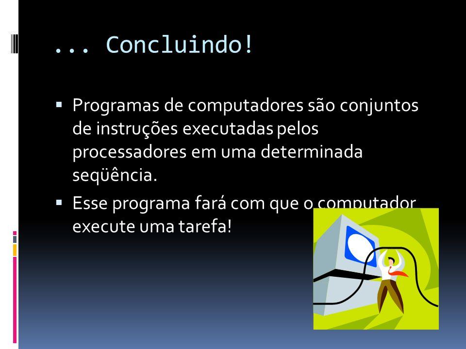 ... Concluindo! Programas de computadores são conjuntos de instruções executadas pelos processadores em uma determinada seqüência.
