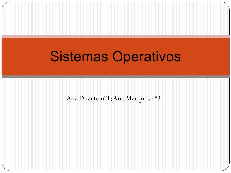 Ana Duarte nº1; Ana Marques nº2