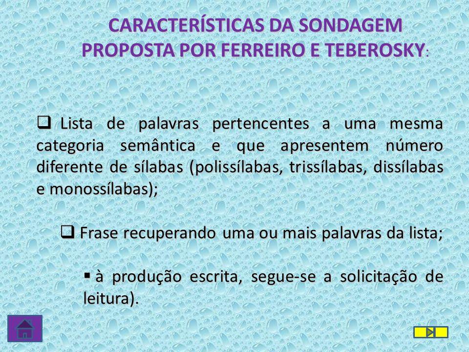 CARACTERÍSTICAS DA SONDAGEM PROPOSTA POR FERREIRO E TEBEROSKY: