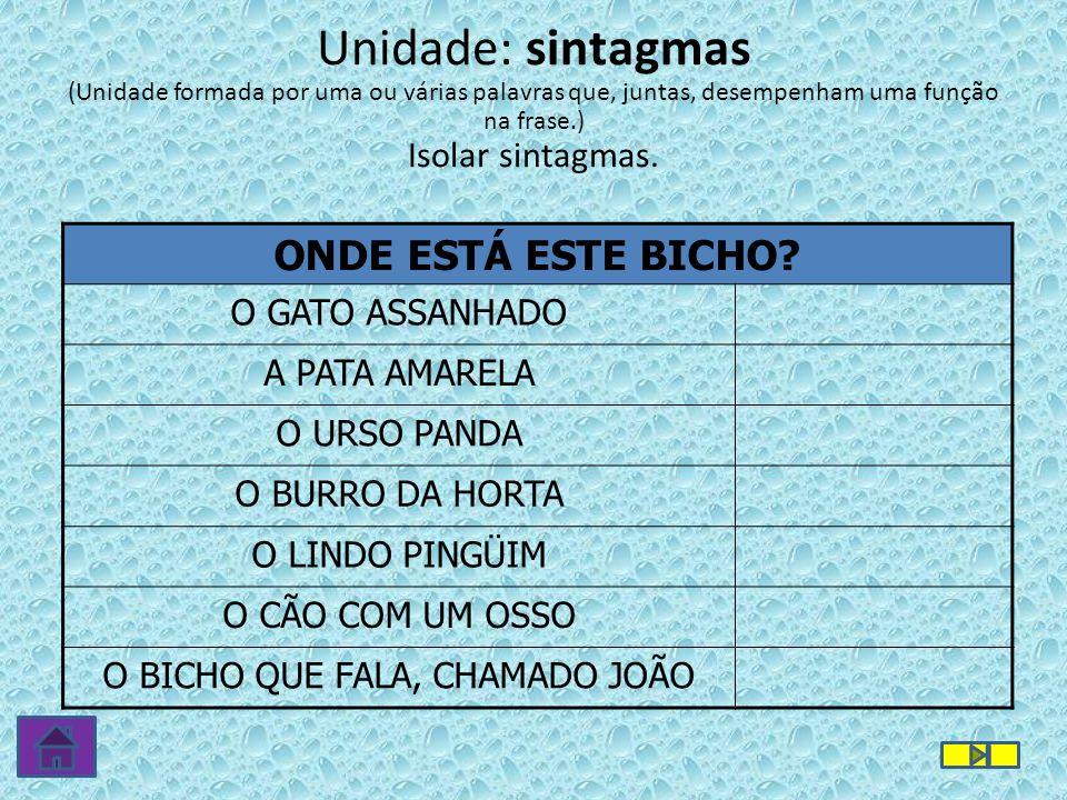 O BICHO QUE FALA, CHAMADO JOÃO