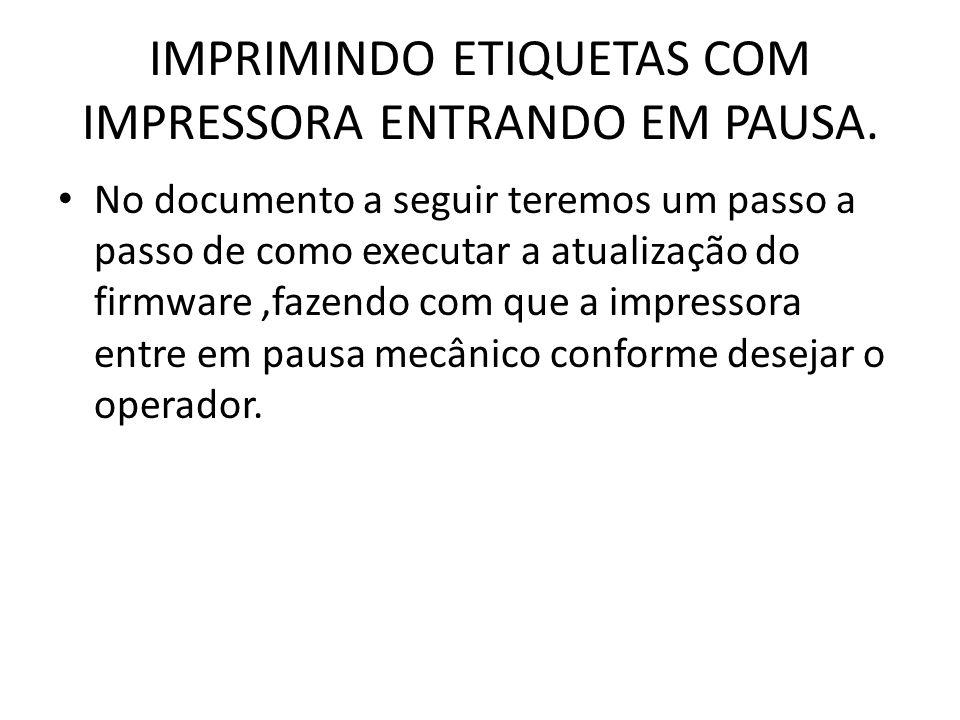 IMPRIMINDO ETIQUETAS COM IMPRESSORA ENTRANDO EM PAUSA.