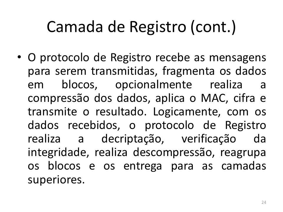 Camada de Registro (cont.)