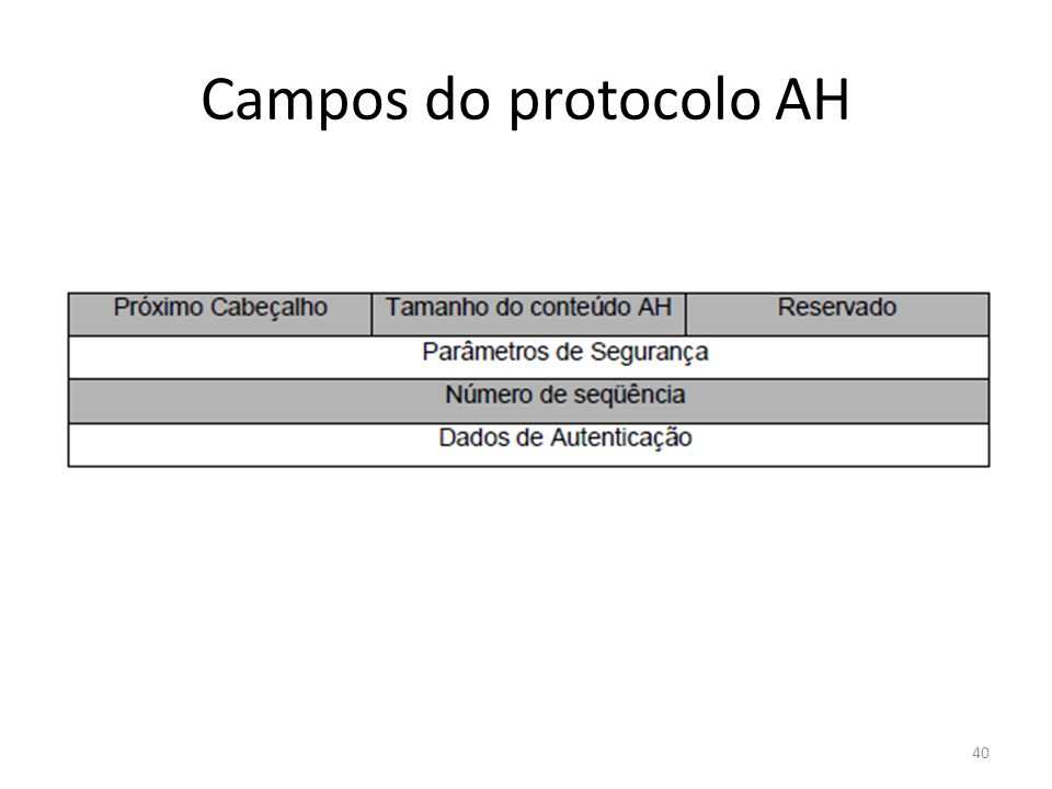 Campos do protocolo AH