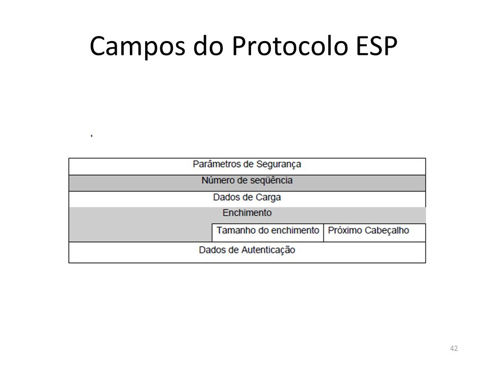 Campos do Protocolo ESP