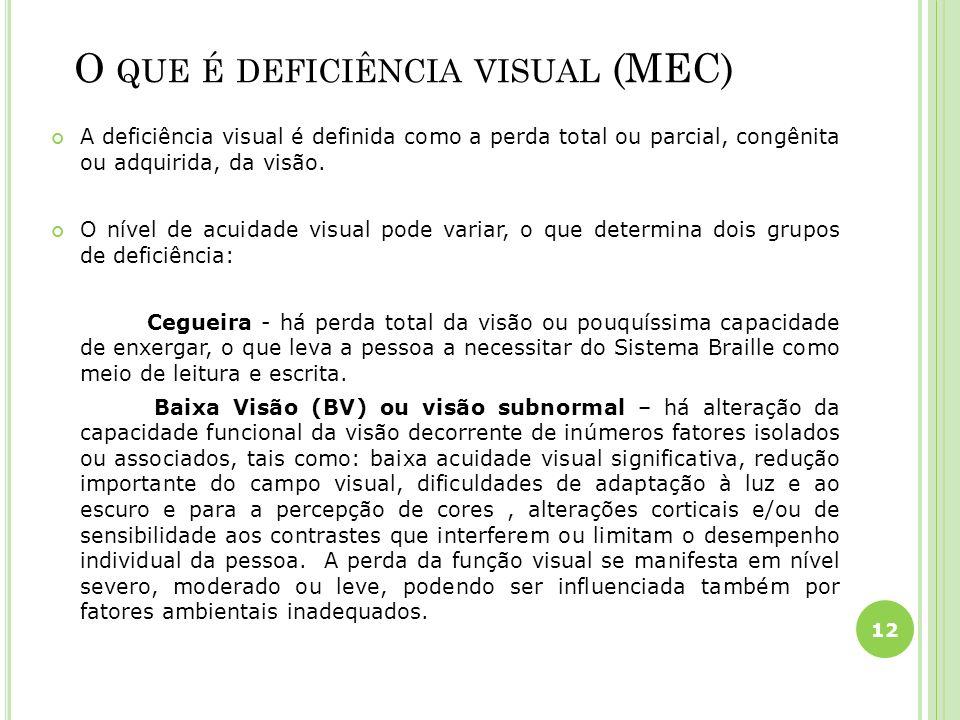O que é deficiência visual (MEC)
