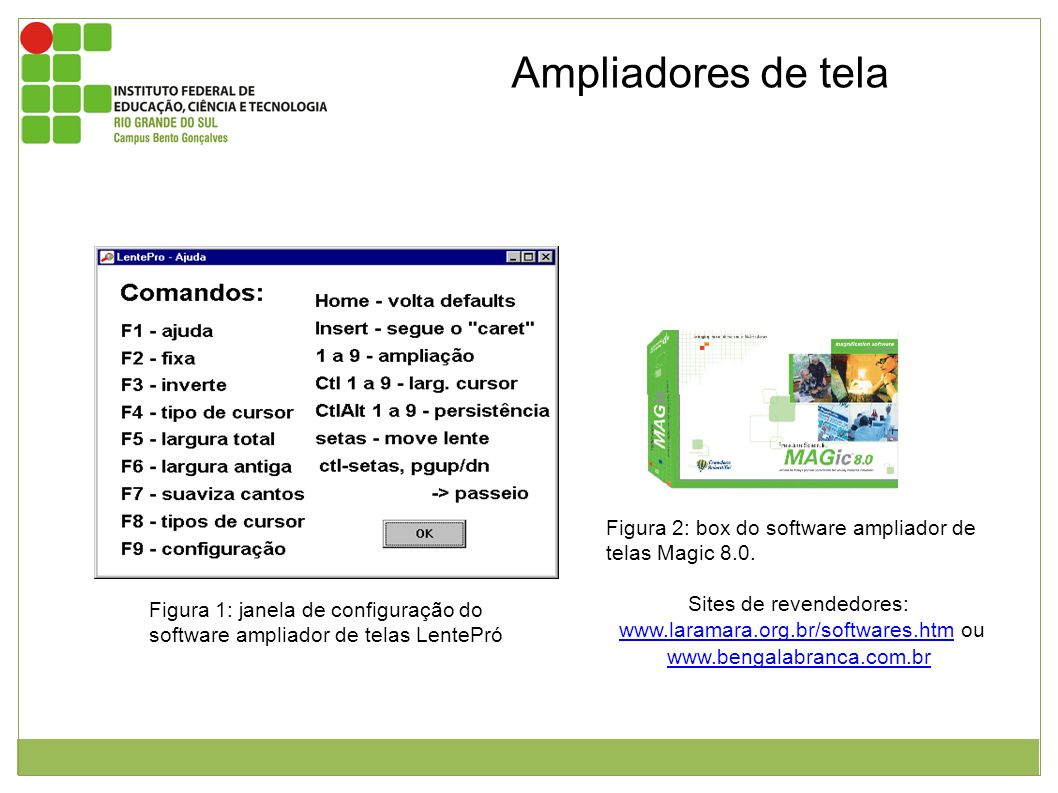 Ampliadores de tela Figura 2: box do software ampliador de telas Magic 8.0. Sites de revendedores: