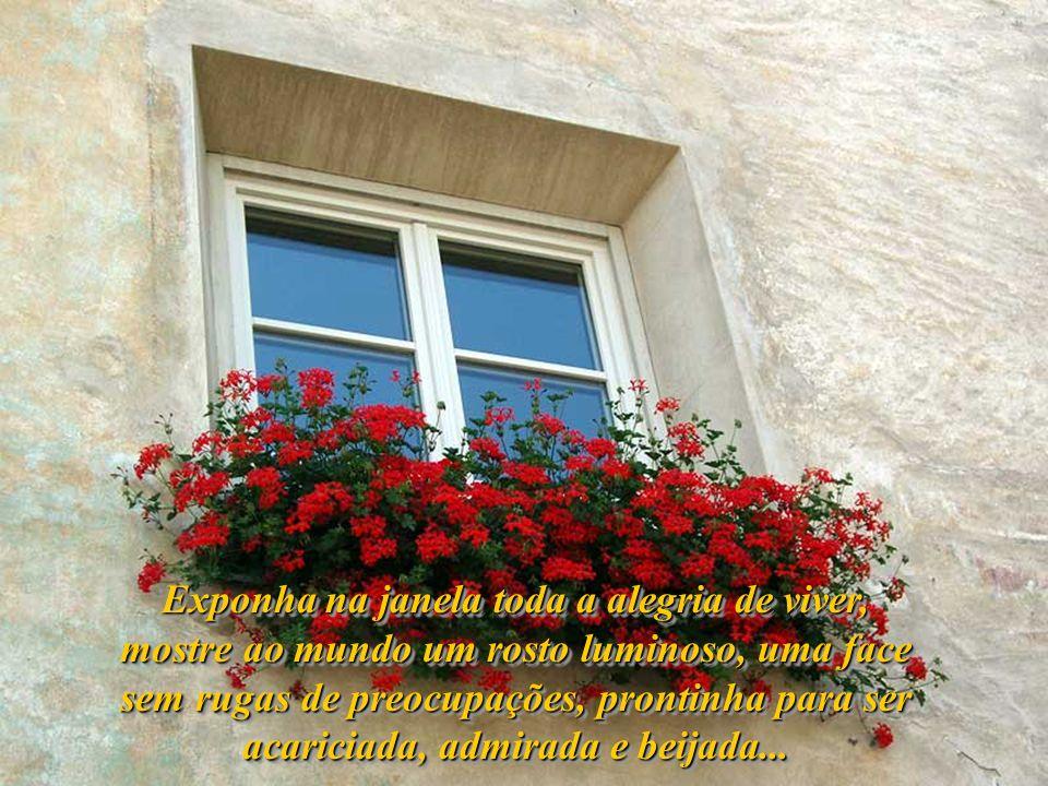Exponha na janela toda a alegria de viver, mostre ao mundo um rosto luminoso, uma face sem rugas de preocupações, prontinha para ser acariciada, admirada e beijada...