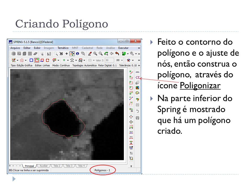Criando Polígono Feito o contorno do polígono e o ajuste de nós, então construa o polígono, através do ícone Poligonizar.