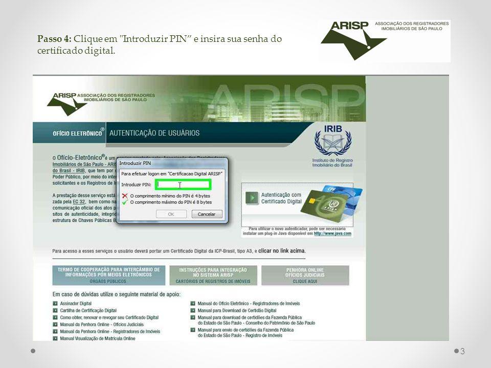 Passo 4: Clique em Introduzir PIN e insira sua senha do certificado digital.