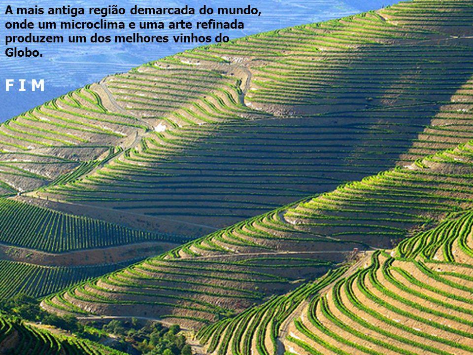 A mais antiga região demarcada do mundo, onde um microclima e uma arte refinada produzem um dos melhores vinhos do Globo.