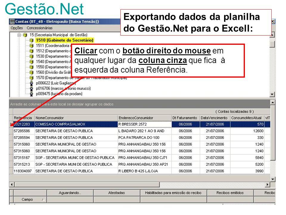 Gestão.Net Exportando dados da planilha do Gestão.Net para o Excell: