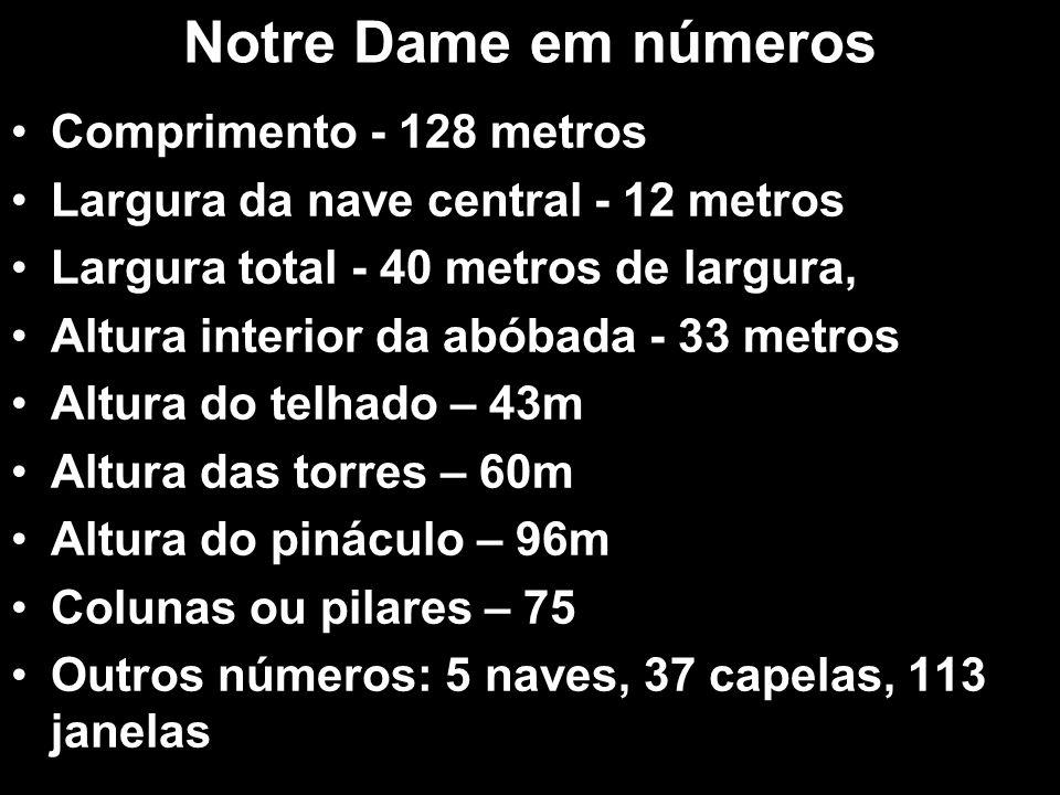 Notre Dame em números Comprimento - 128 metros
