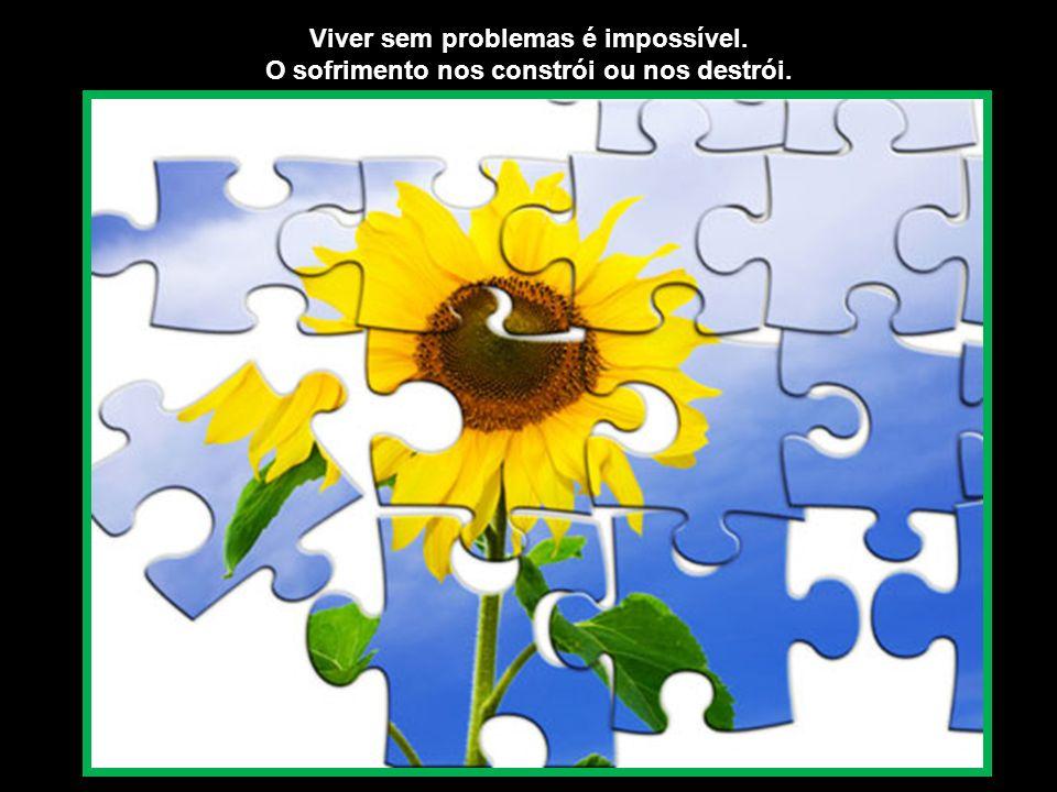 Viver sem problemas é impossível.