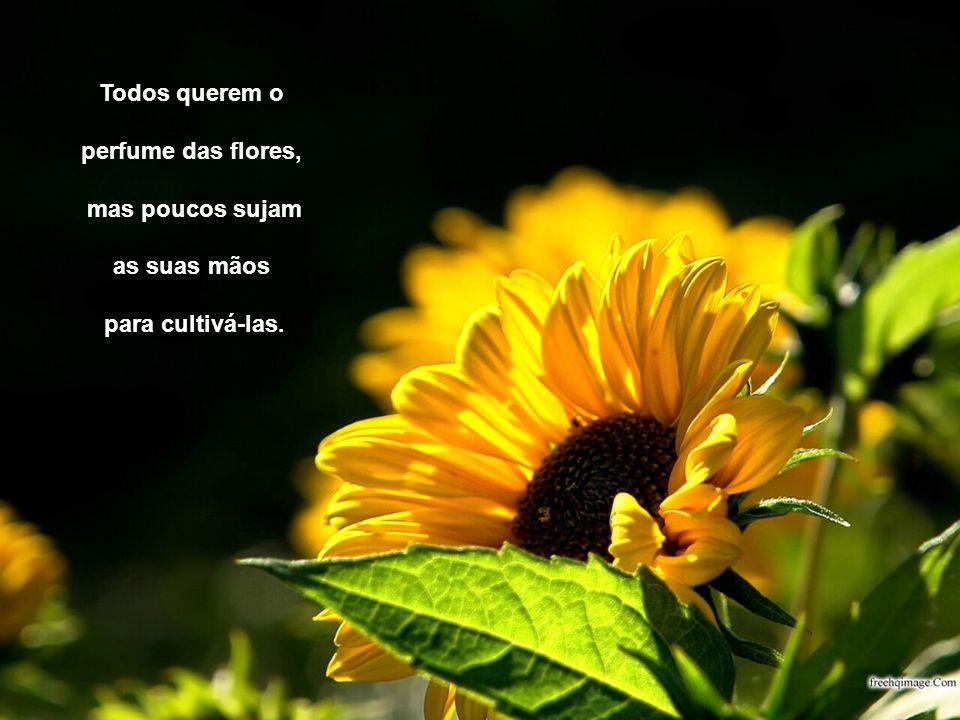 Todos querem o perfume das flores, mas poucos sujam as suas mãos para cultivá-las.