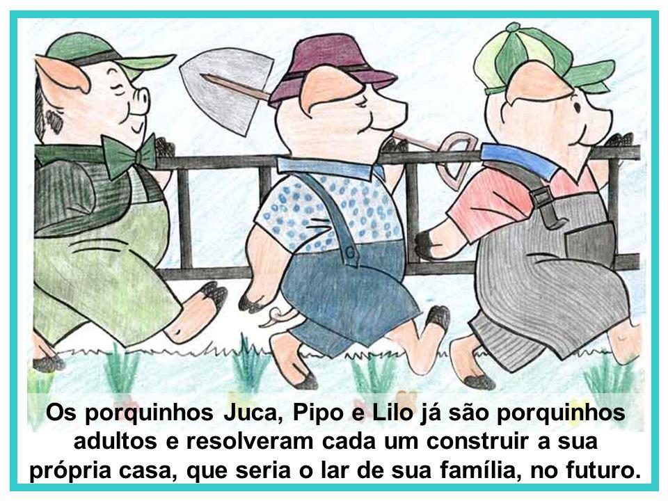 Os porquinhos Juca, Pipo e Lilo já são porquinhos adultos e resolveram cada um construir a sua própria casa, que seria o lar de sua família, no futuro.