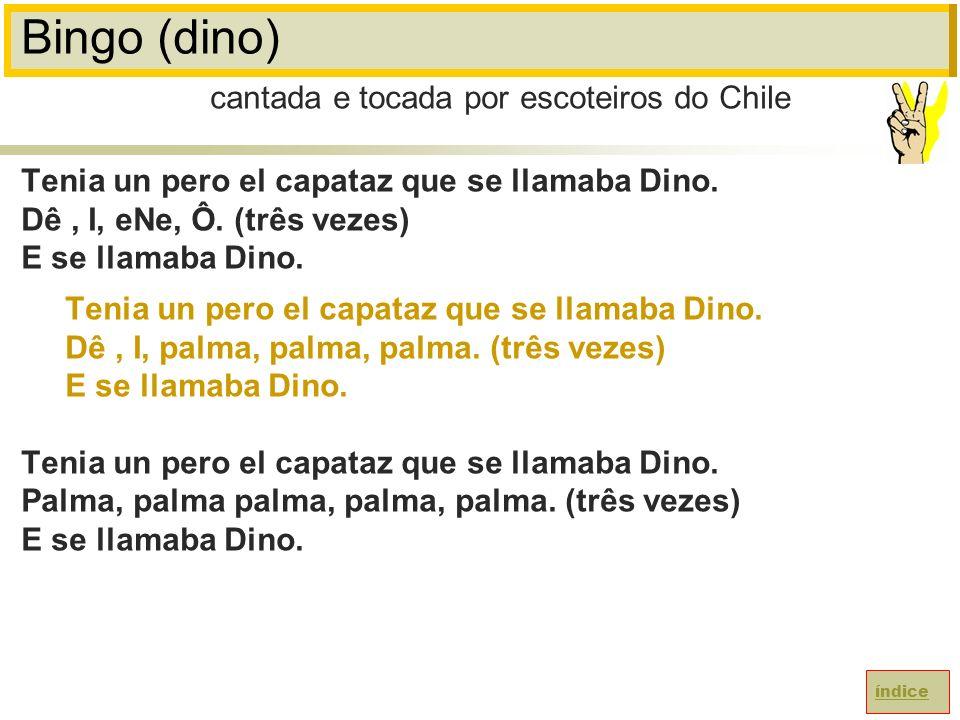 Bingo (dino) cantada e tocada por escoteiros do Chile