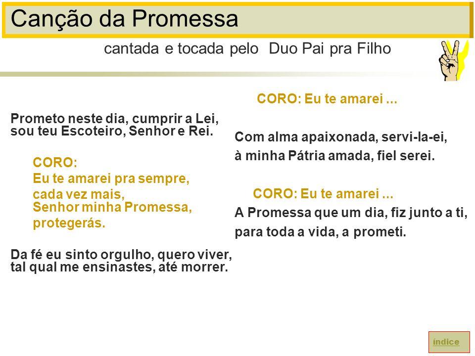 Canção da Promessa cantada e tocada pelo Duo Pai pra Filho