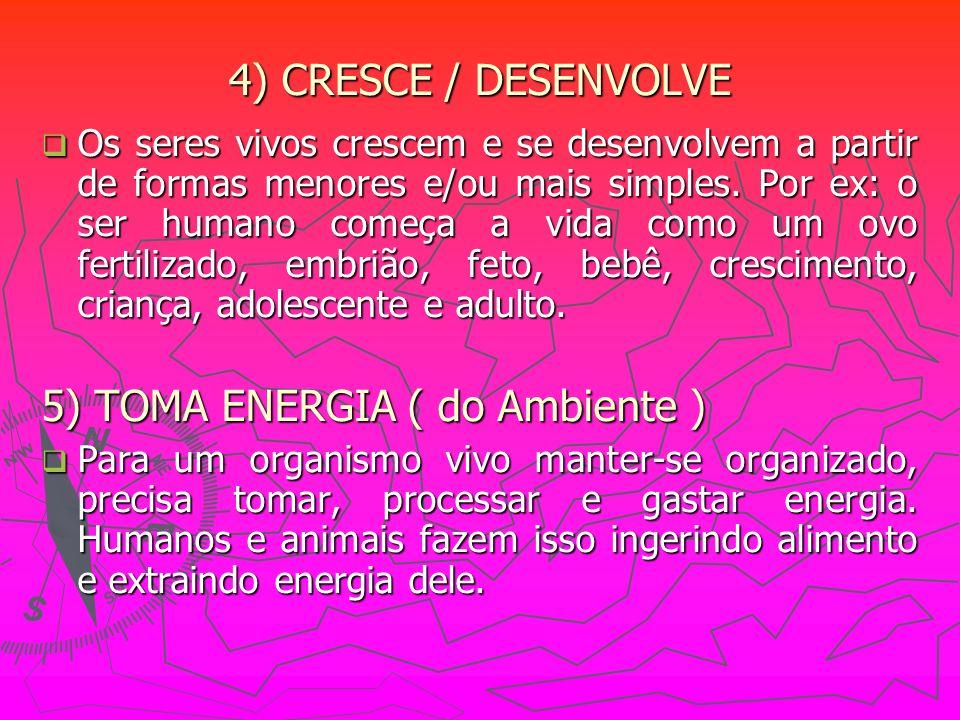 5) TOMA ENERGIA ( do Ambiente )