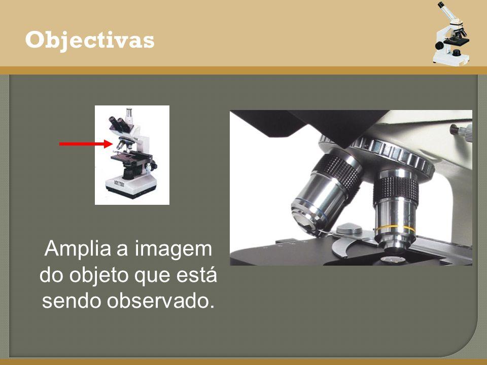 Amplia a imagem do objeto que está sendo observado.