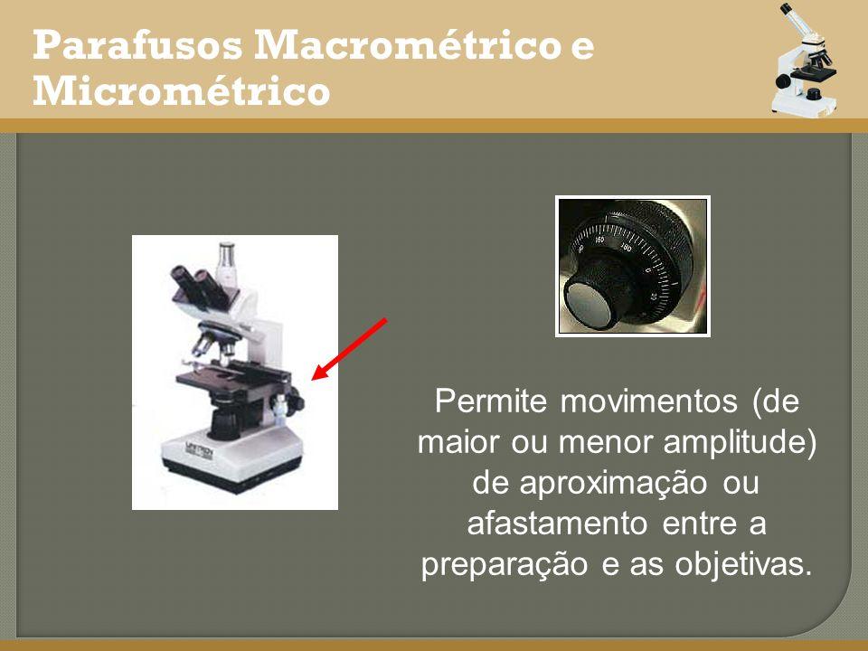 Parafusos Macrométrico e Micrométrico