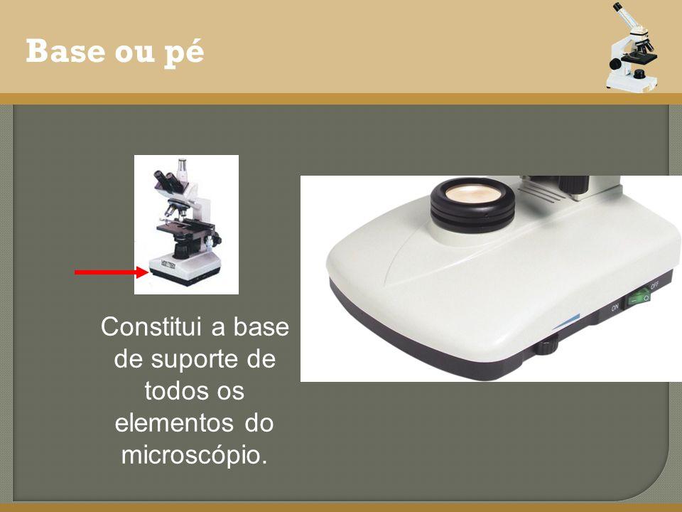 Constitui a base de suporte de todos os elementos do microscópio.